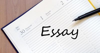 What You need to understand About 123 Essay  essay define for you